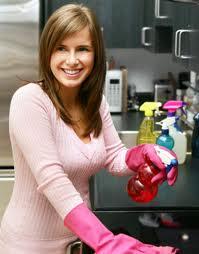 Uredjenje - Napravite sami sredstvo za čišćenje, oslobodite se pesticida